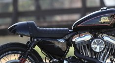 Burly Café Racer Tail Section for Sportster